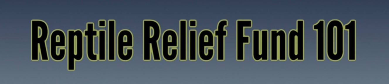Reptile Relief Charity Auction