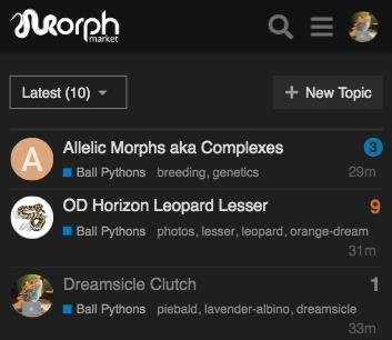 MorphMarket Reptile Community